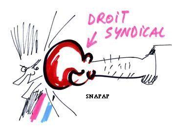 SNAPAP/Sante